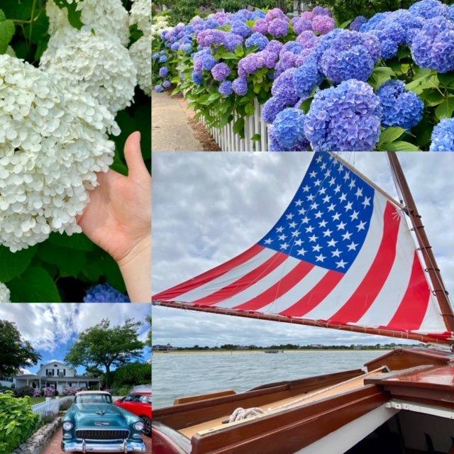 Edgartown hydrangeas and flags